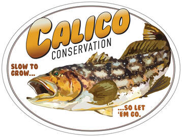 Calico Conservation